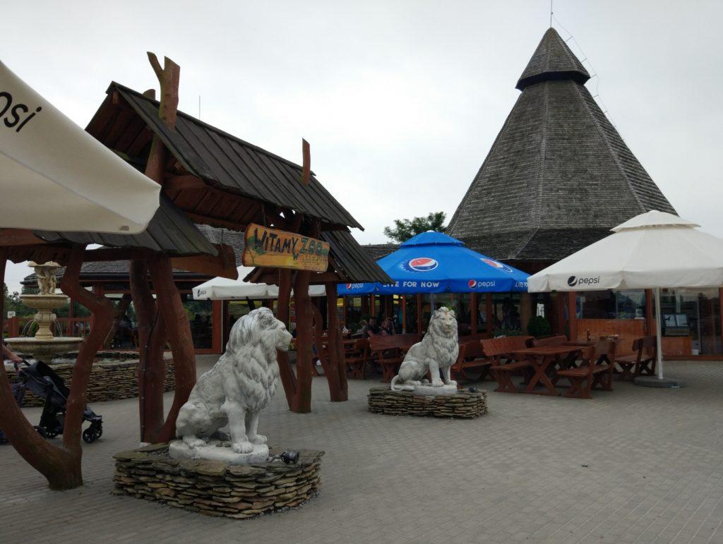 zoo safari w Borysewie - wejście